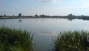 Balta Bacova