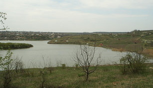 Balta Catalui-Cascioarele